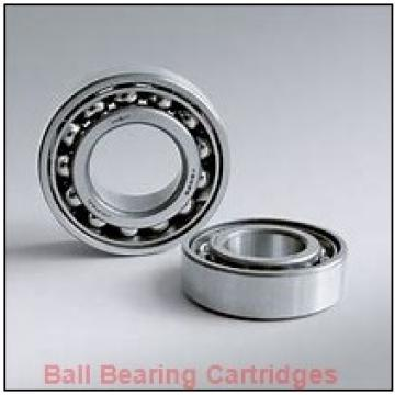 PEER RCSM-19 Rubber Insert Ball Bearing Cartridges
